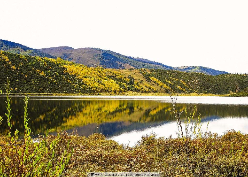 设计图库 自然景观 自然风景  普达措国家森林公园 国家森林公园 云南
