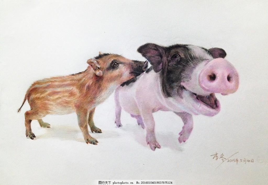 两只小猪 猪 野猪 宠物猪 小猪 可爱猪 设计 文化艺术 绘画书法 72dpi