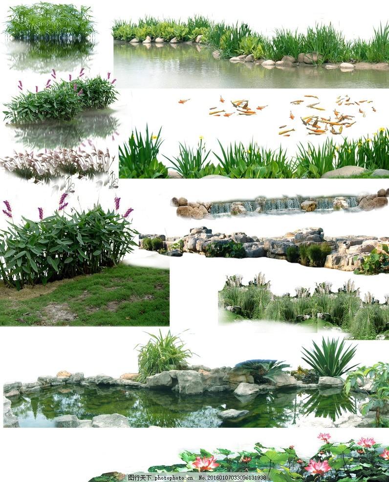 psd植物素材 园林景观素材 园林效果图 景观效果图 园林景观素材psd