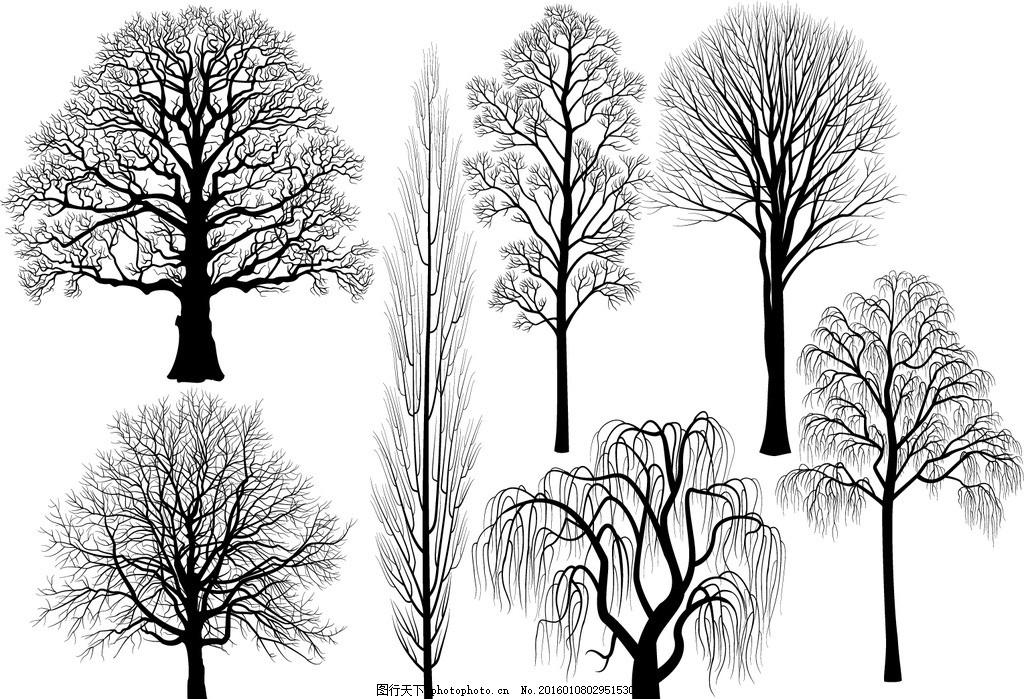 树剪影 装饰树枝 发财树 黑白树 树干剪影 装饰画 抽象树 剪影树