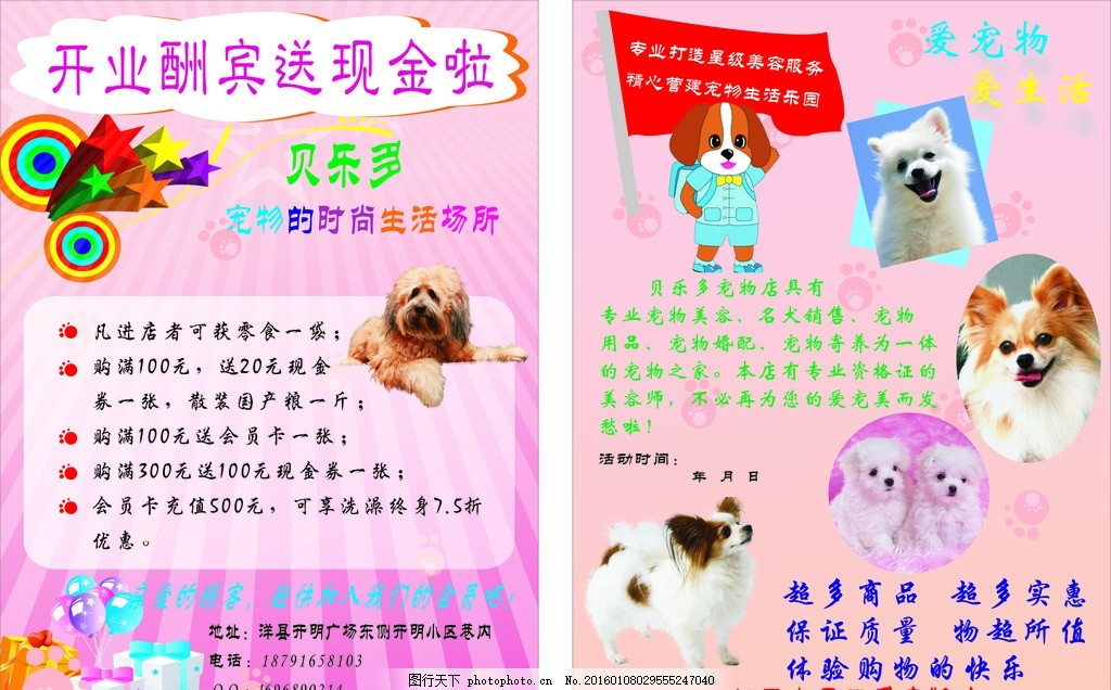 宠物店 可爱的宠物 宠物图片 宠物宣传彩页 动物活动宣传 粉色斑斓