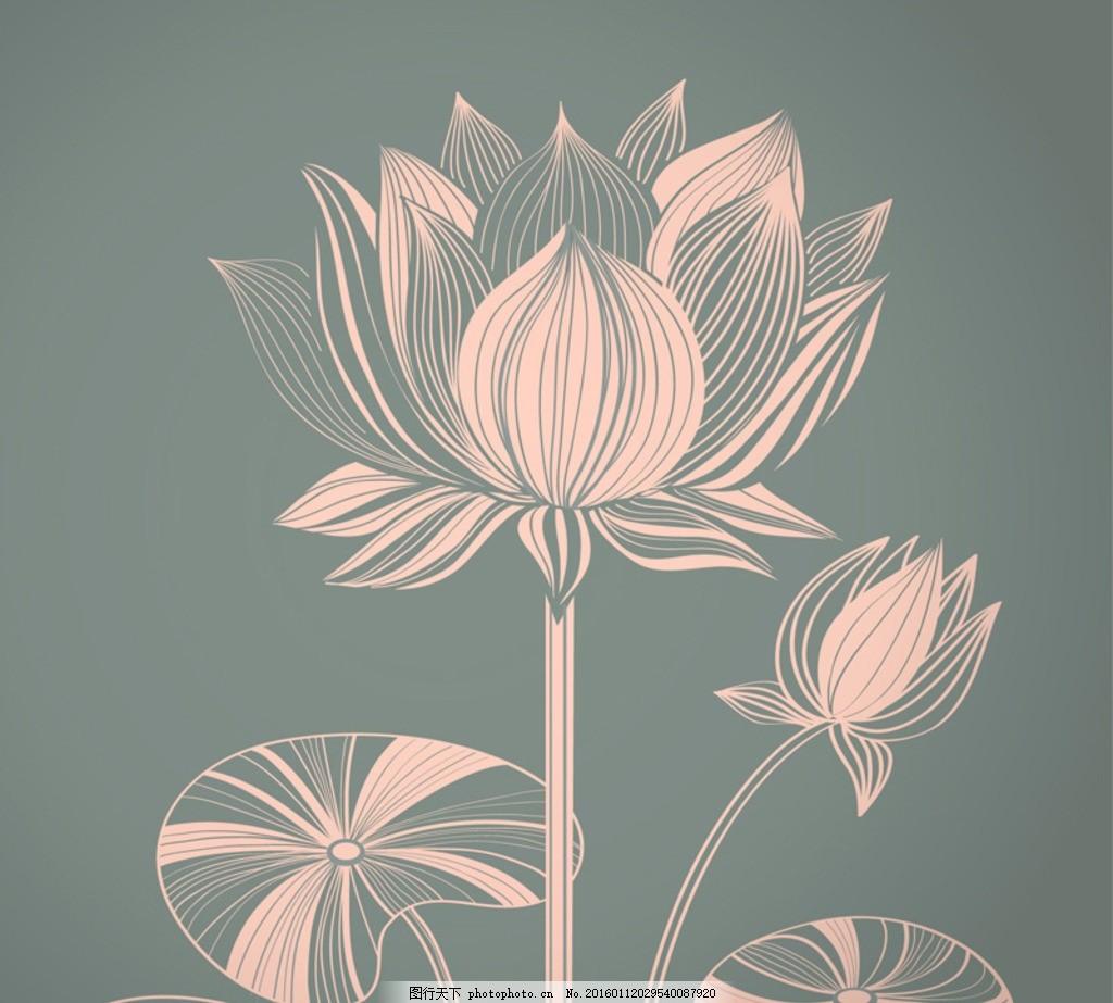 白描荷花 线描荷花 花卉 植物 矢量图
