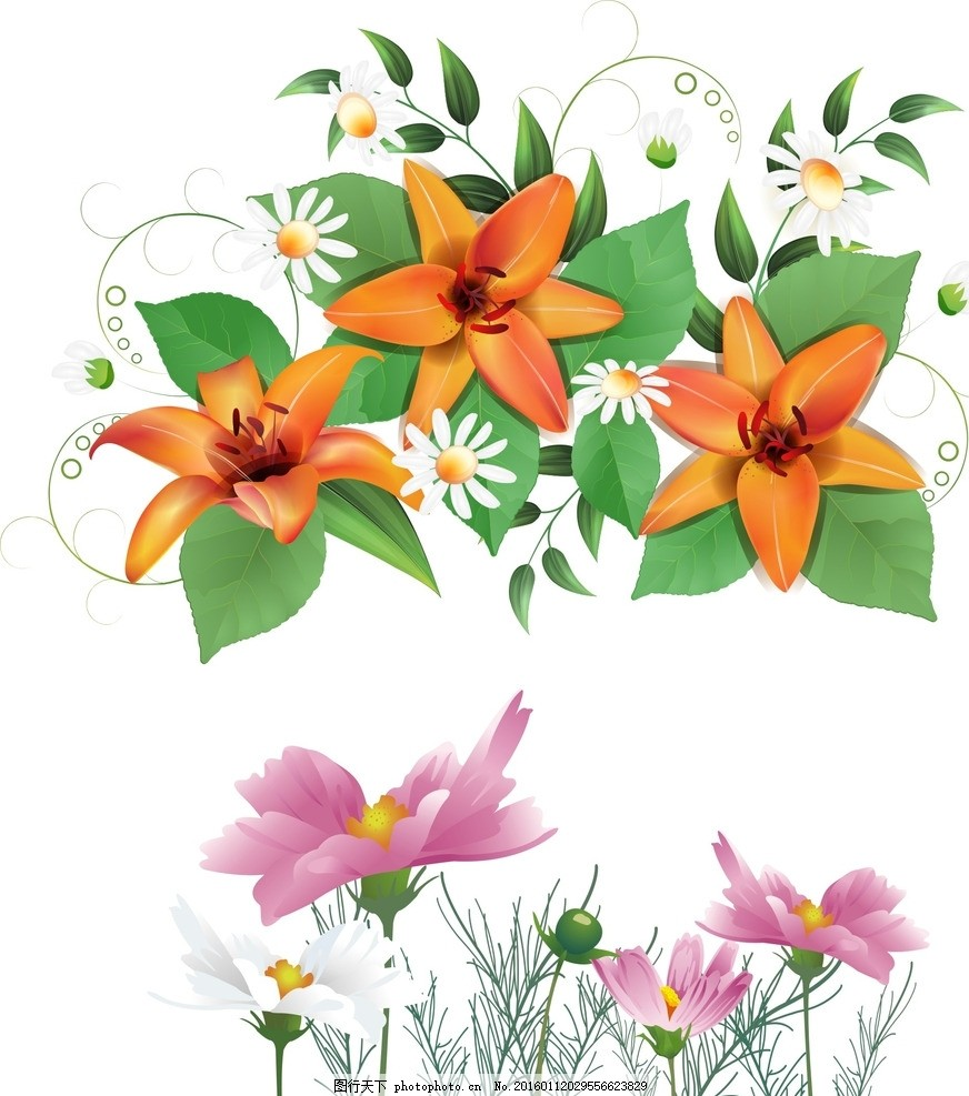 粉色花朵 手绘花朵