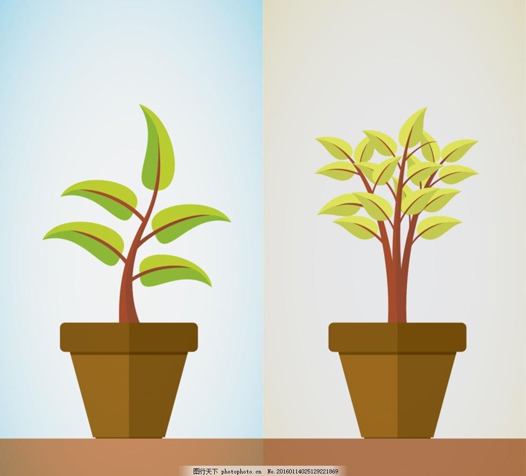盆栽植物 花盆 观赏植物 生长 插画 背景 海报 画册 矢量植物
