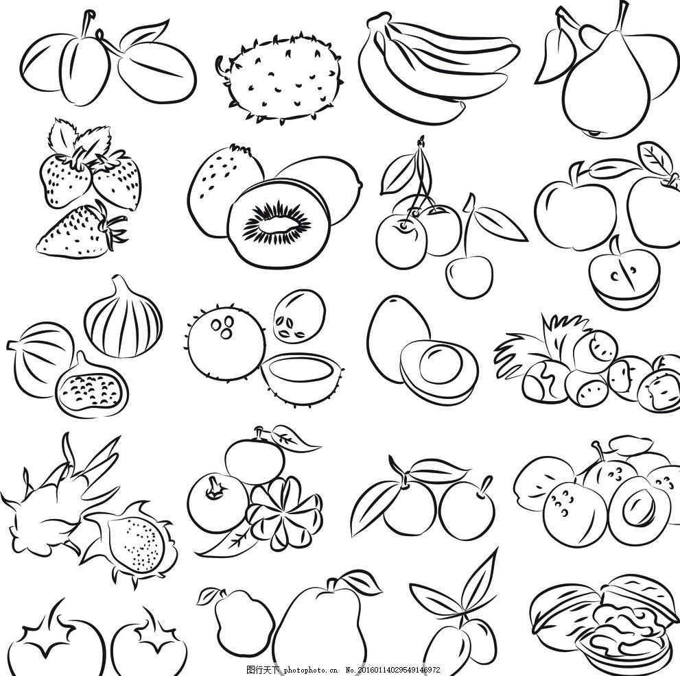 手绘水果 新鲜水果 水果蔬菜 餐饮美食 蔬菜水果 生物世界 矢量素材