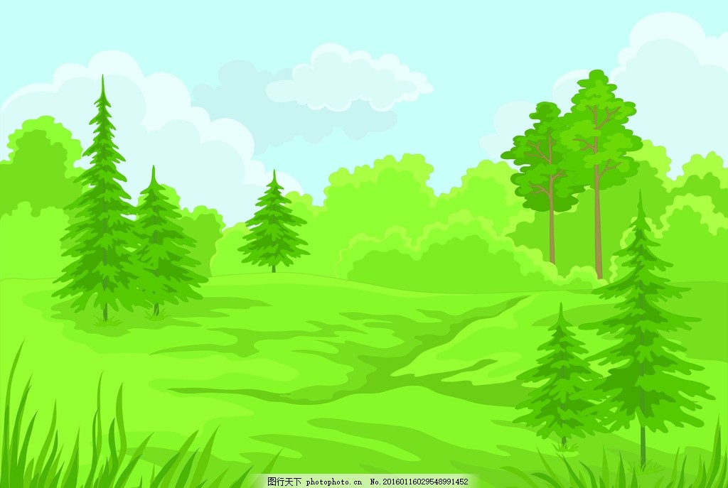 森林風景 郊外 樹木 草地 景致