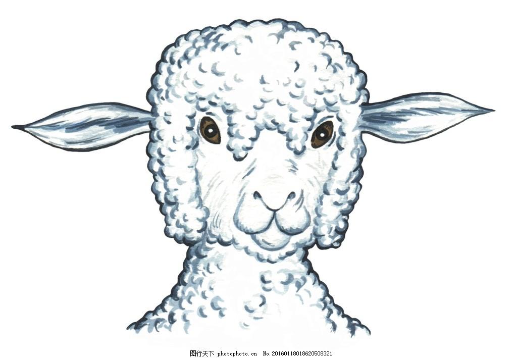 手绘卡通 卡通手绘 动物 欧洲 绵羊 可爱 正面 微笑 可上色 设计 动漫