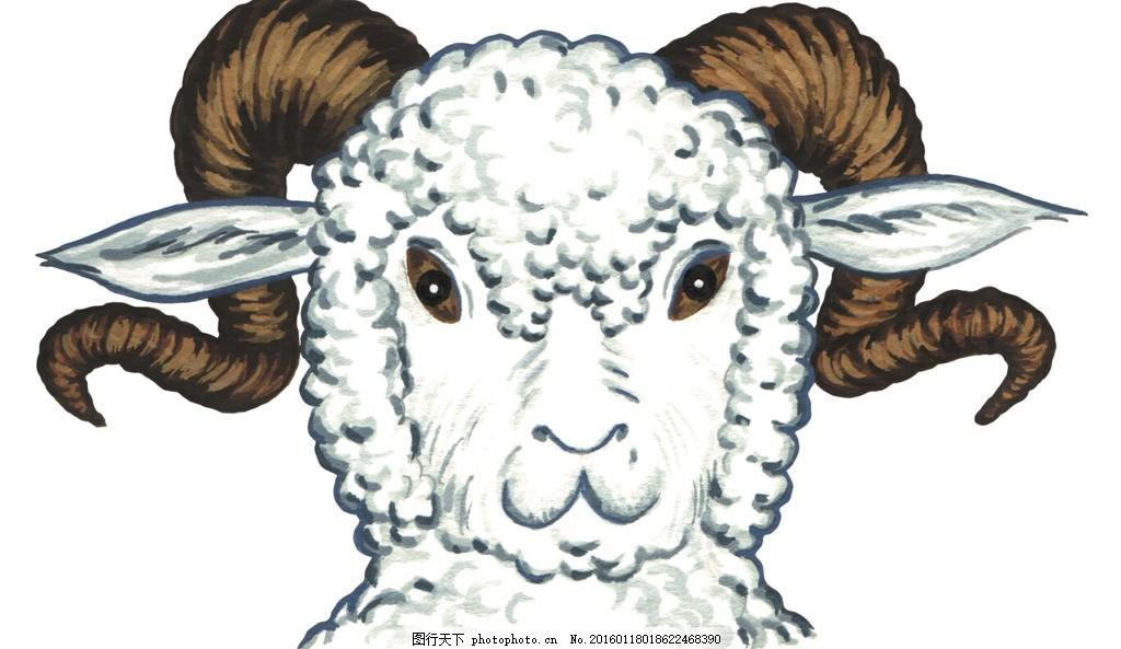 手绘卡通 卡通手绘 动物 欧洲 绵羊 可爱 羊角 微笑 可上色