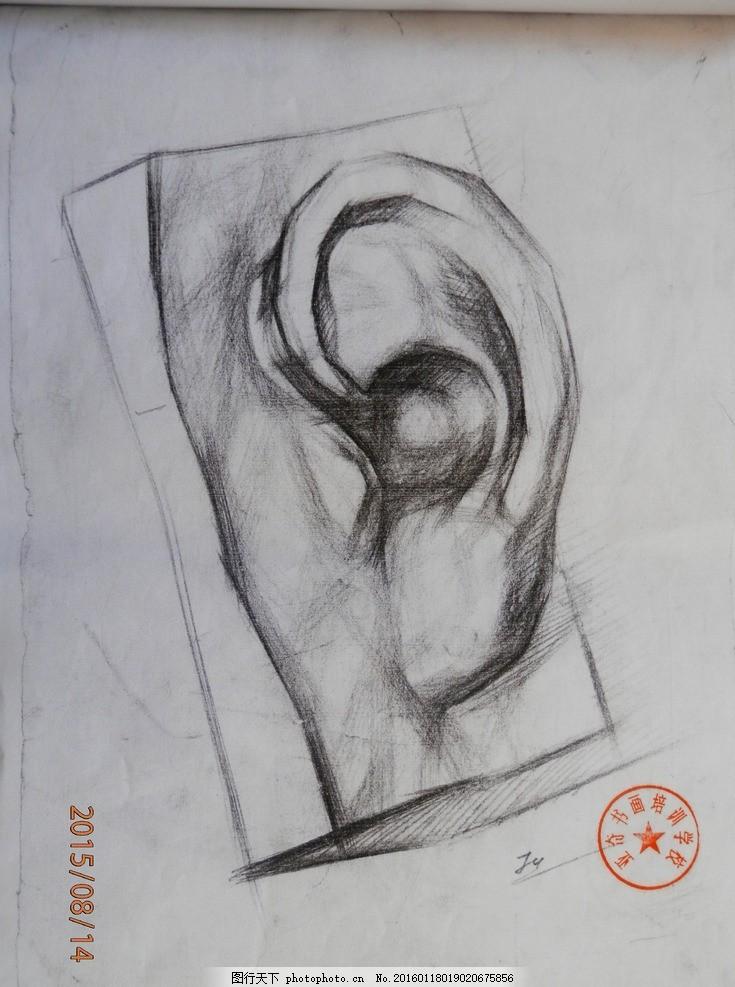素描 静物 石膏像 结构 五官 写生 大师 耳朵 摄影 美术绘画
