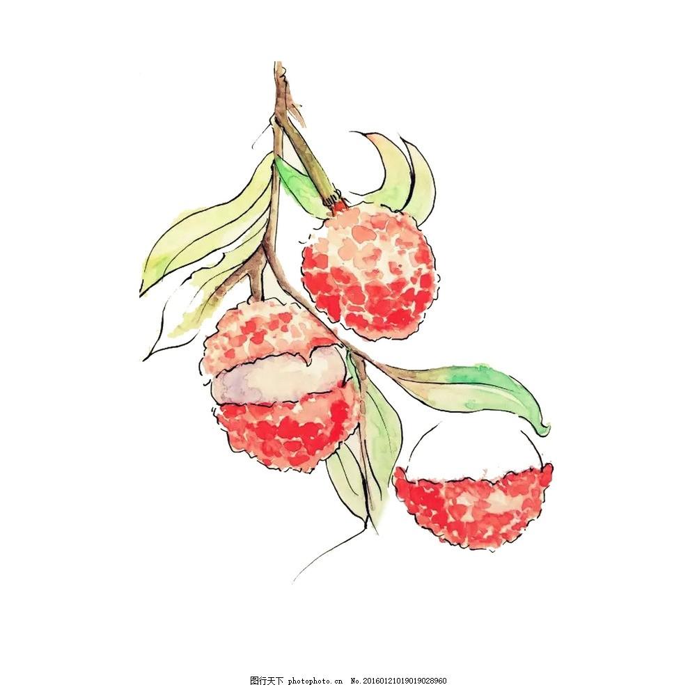 水果荔枝 彩色 红色 手绘 效果 原创 水彩
