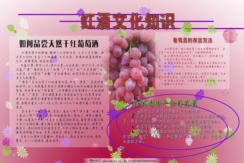 红酒文化知识手抄报 红酒手抄报 葡萄酒 红色渐变 紫圈