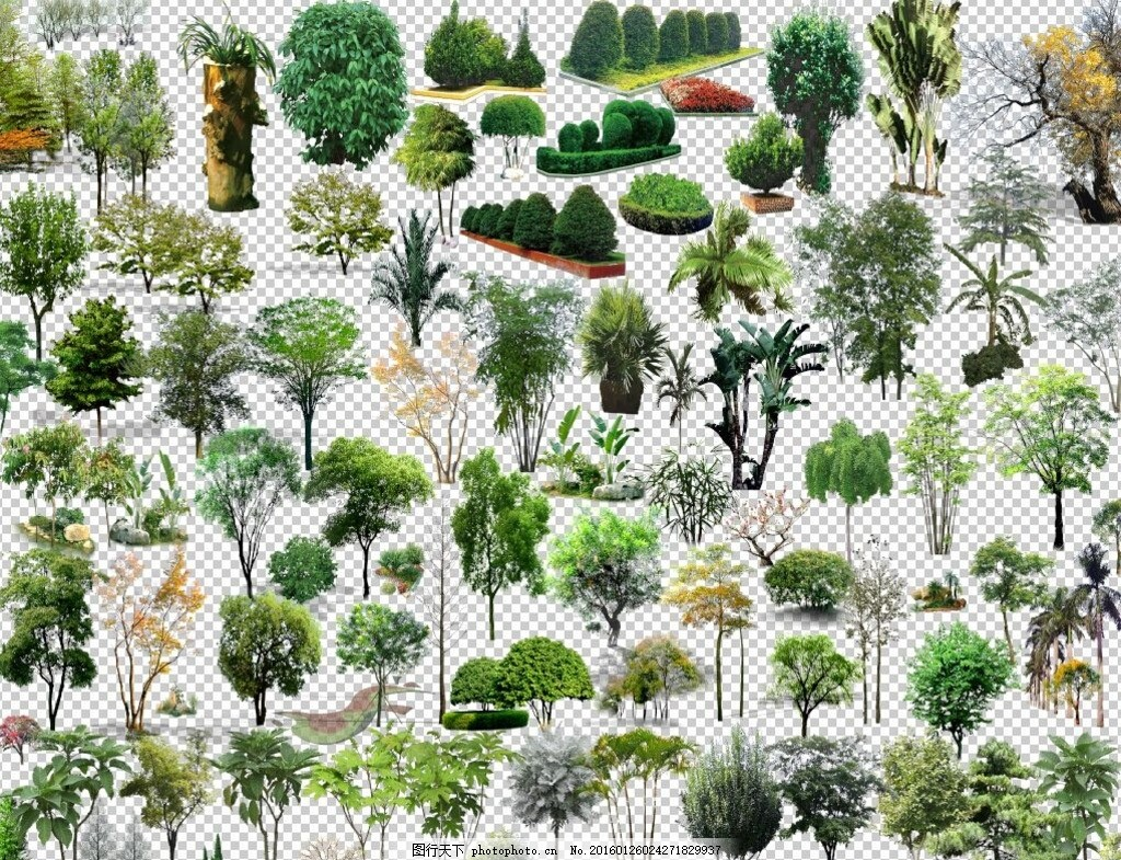 园林景观效果图植物ps素材 园林 景观        植物 ps 素材 室外 建筑