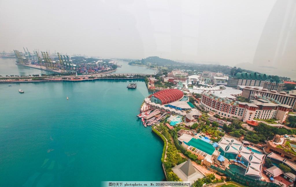 新加坡 新加坡风景 新加坡建筑 新加坡景点 树木 新加坡 摄影 旅游