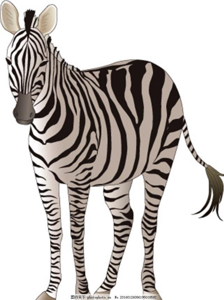 矢量斑马 卡通 动物 纹路 皮毛 肌理 淘宝素材 生物世界 野生动物