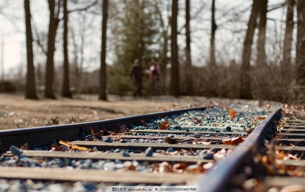 铁轨 风景 壁纸 树叶 轨道 树林 摄影
