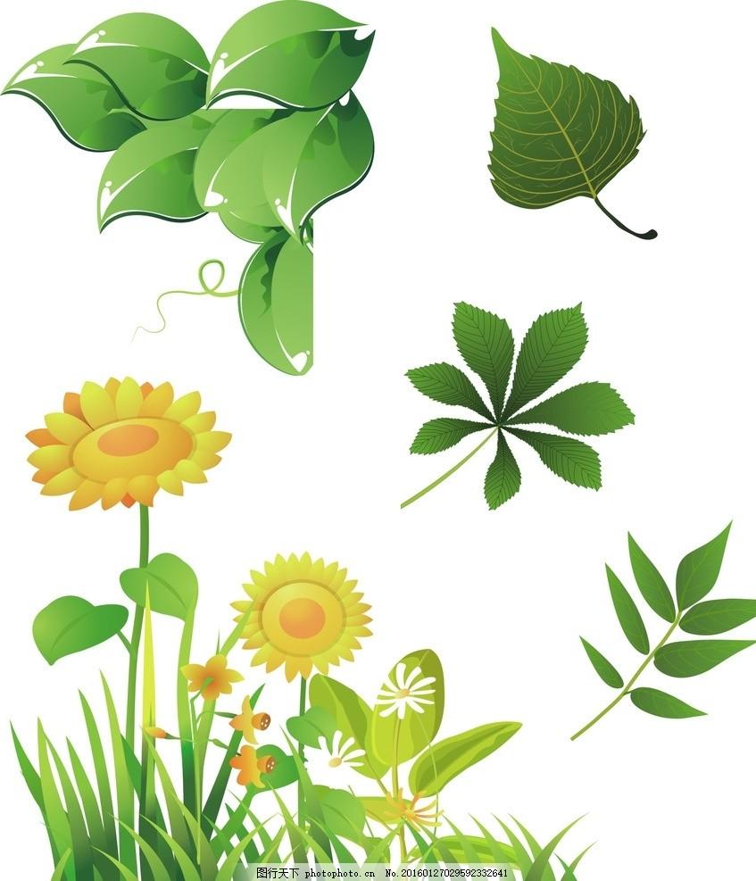 向日葵矢量 向日葵素材 灿烂 鲜花 植物 矢量素材 幼儿园 卡通矢量