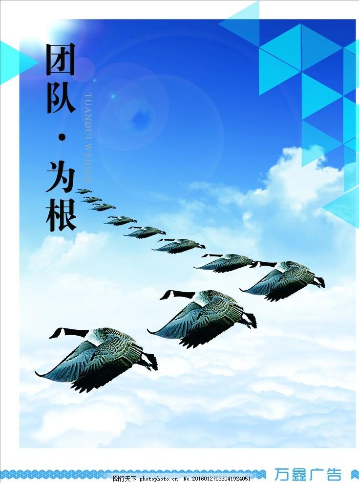 企业文化 公司展板 大雁 团队为根 励志展板 蓝色背景 蓝天背景 蓝色