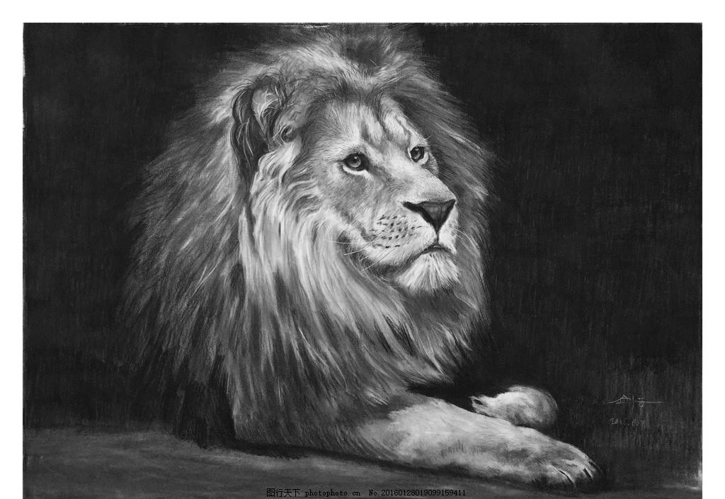狮子素描 狮子 动物 素描 黑白 炭笔 设计 文化艺术 绘画书法 72dpi