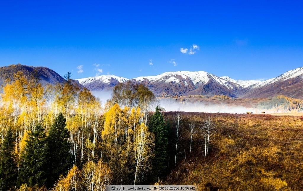 树林风景摄影 远山 树林风景图片 风景 高山 树 云 山水 自然景观