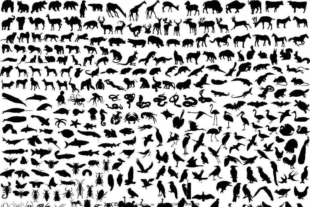 各种动物剪影