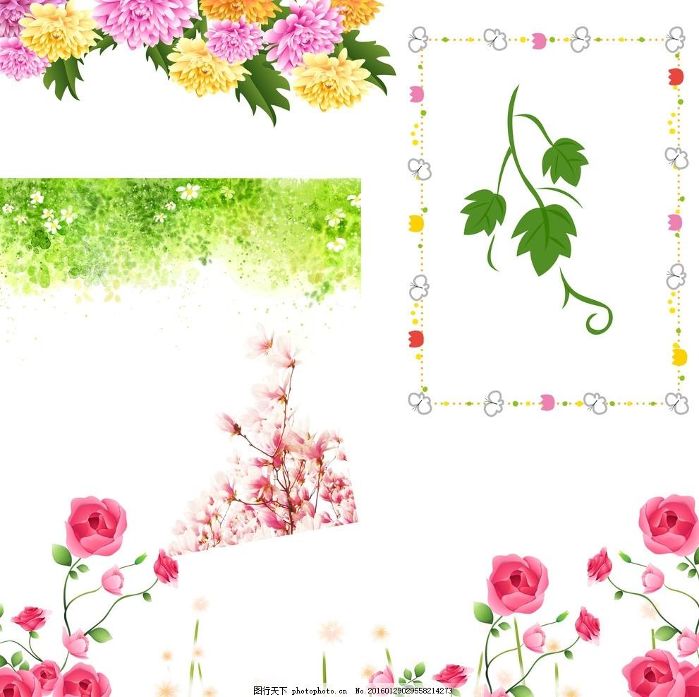 花朵素材 春天花朵素材 春季花朵素材 鲜花花朵 树藤 卡通边框 边框
