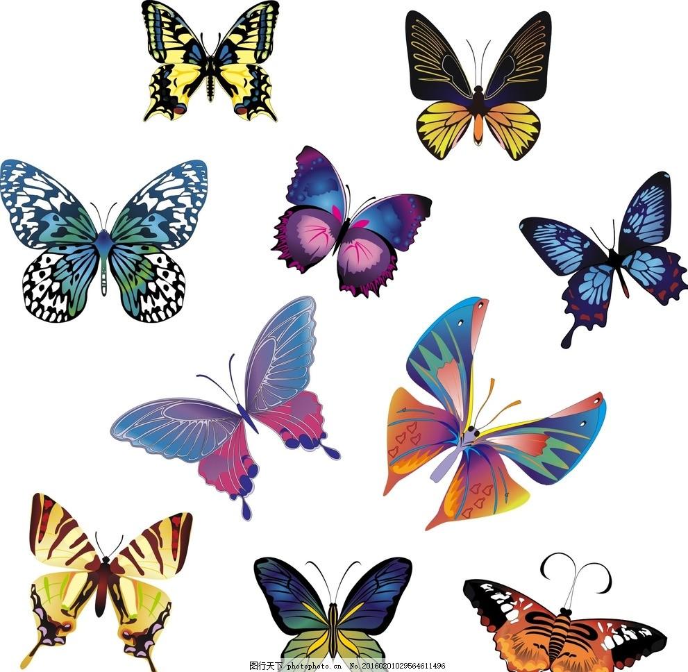 矢量蝴蝶 卡通蝴蝶 手绘蝴蝶 蝴蝶素材 蝴蝶素材大全 缤纷炫丽 飞舞的