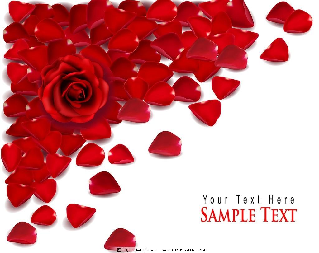 玫瑰花瓣 爱心 手绘玫瑰 精美边款 底纹 花朵 花底纹 情人节日