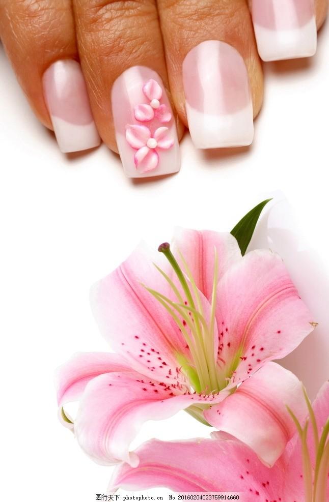 美甲 时尚美甲 淡粉色美甲 鲜花 花朵 花卉 花草 植物 百合花