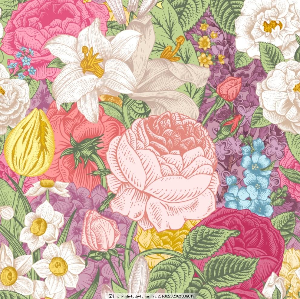 花卉 玫瑰花 牡丹花 手绘 水仙花 月季花 金钱花 设计 底纹边框 背景