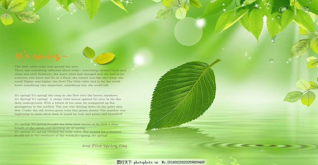 叶子 树叶 落叶 水波 春天 植物 花卉 壁纸墙纸 移门图案 卡通动物