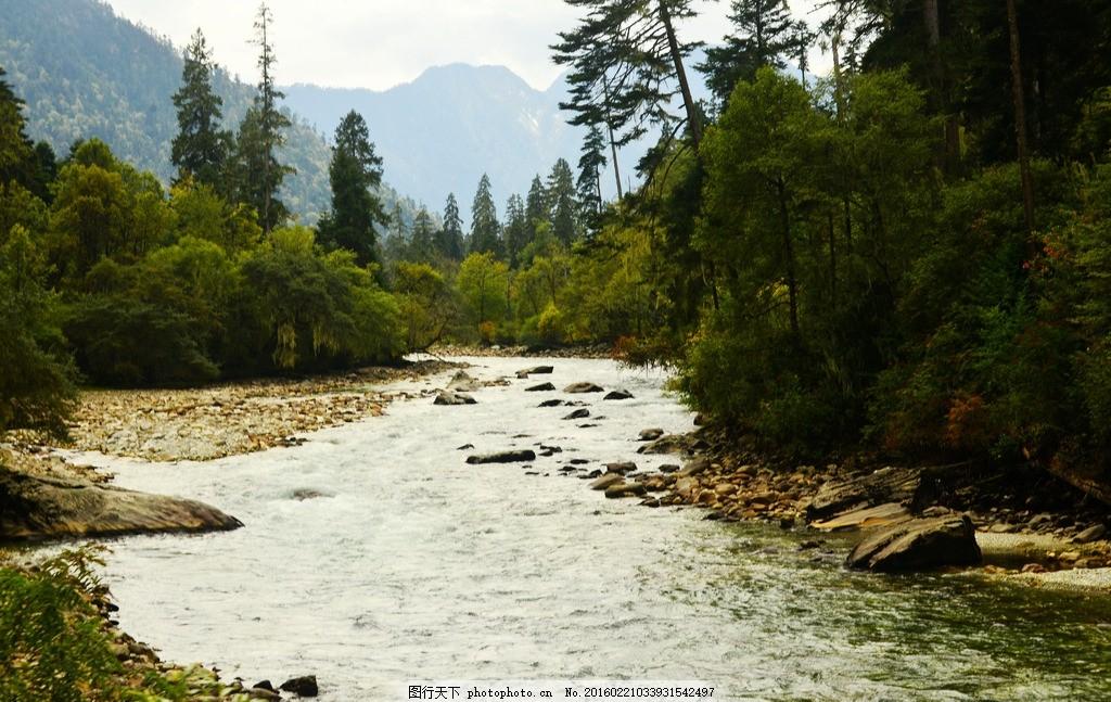 南伊沟 唯美 炫酷 风景 风光 旅行 自然 西藏 自然保护区 摄影