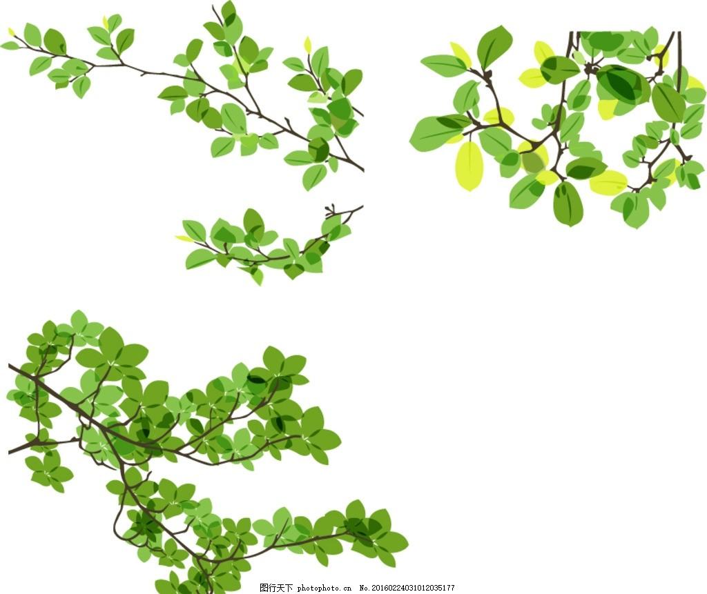 绿色叶子树枝图片