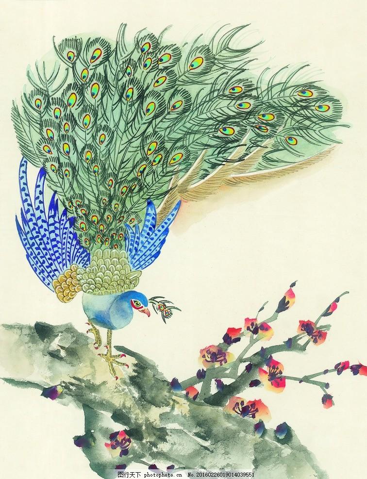 孔雀 鸟类 小鸟 可爱 栖息 高清鸟类 鸟类素材 手绘