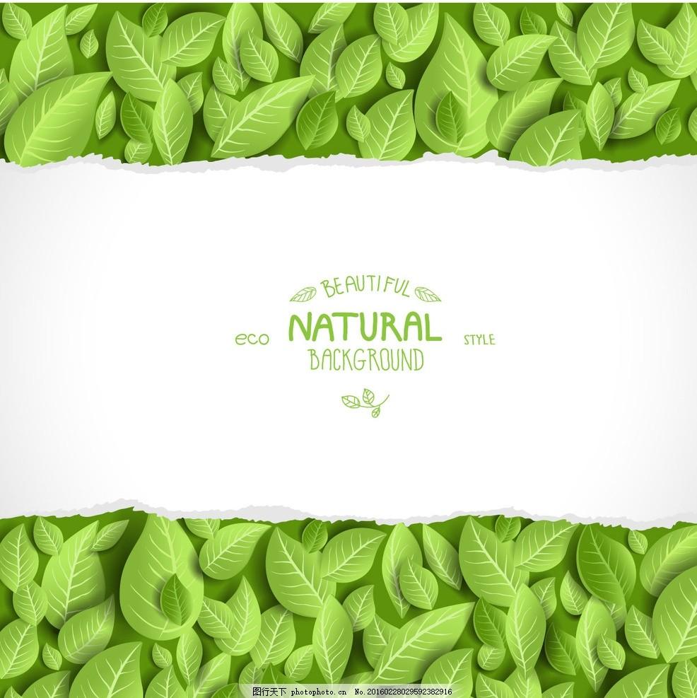 绿卡 清新 春色 小清新 自然 大自然 叶子 绿叶 绿叶子 树叶图片