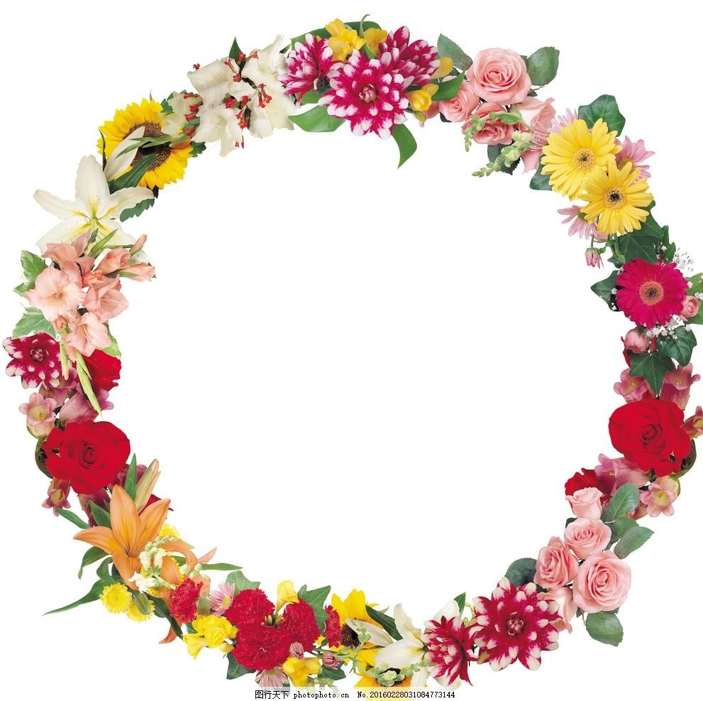 红玫瑰 各种玫瑰 花纹相框 底纹边框 创意 相框 欧式相框 怀旧古典 大