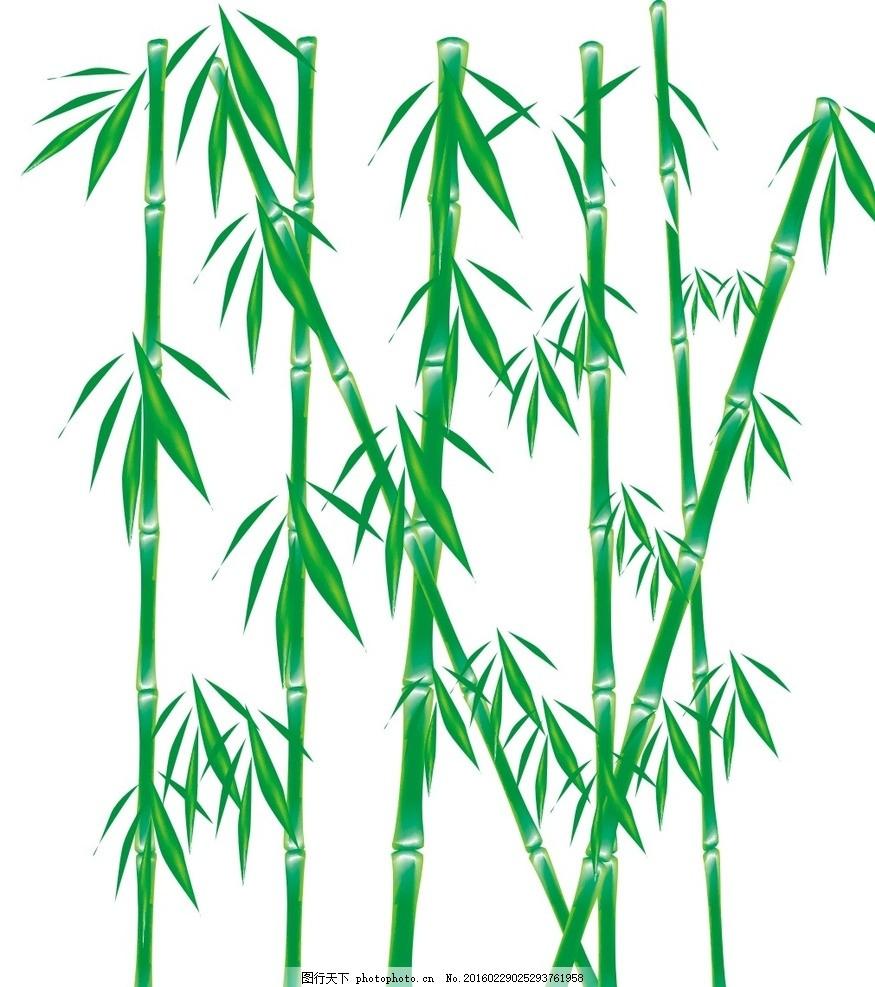 有字体的竹林风景图