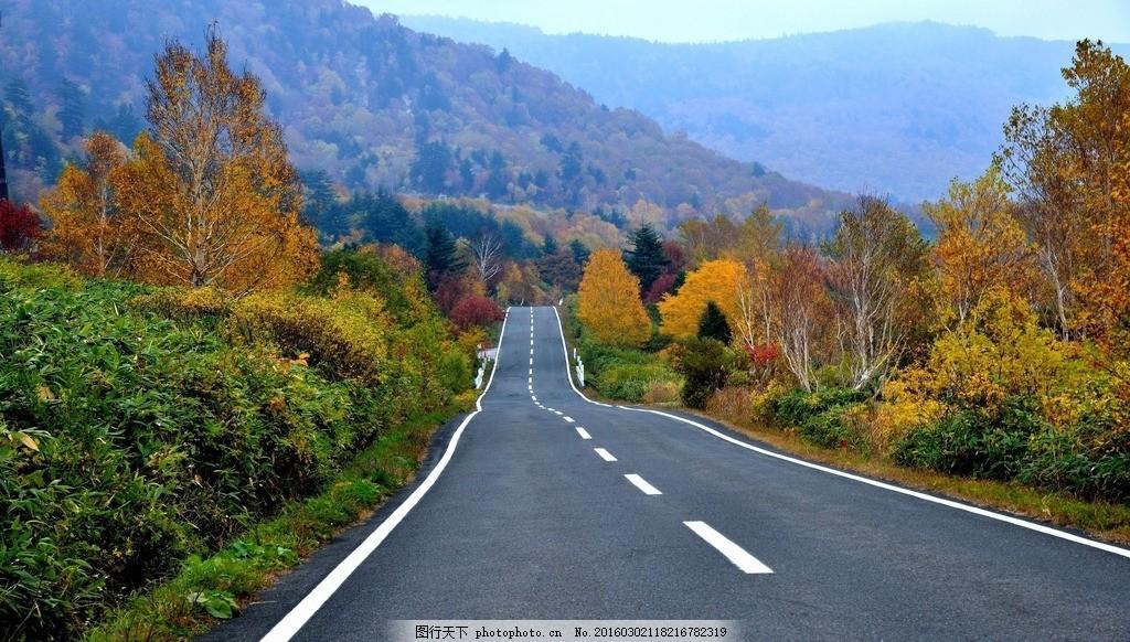 公路 旅行途中 秋天风景 自然风景 马路 摄影 自然景观