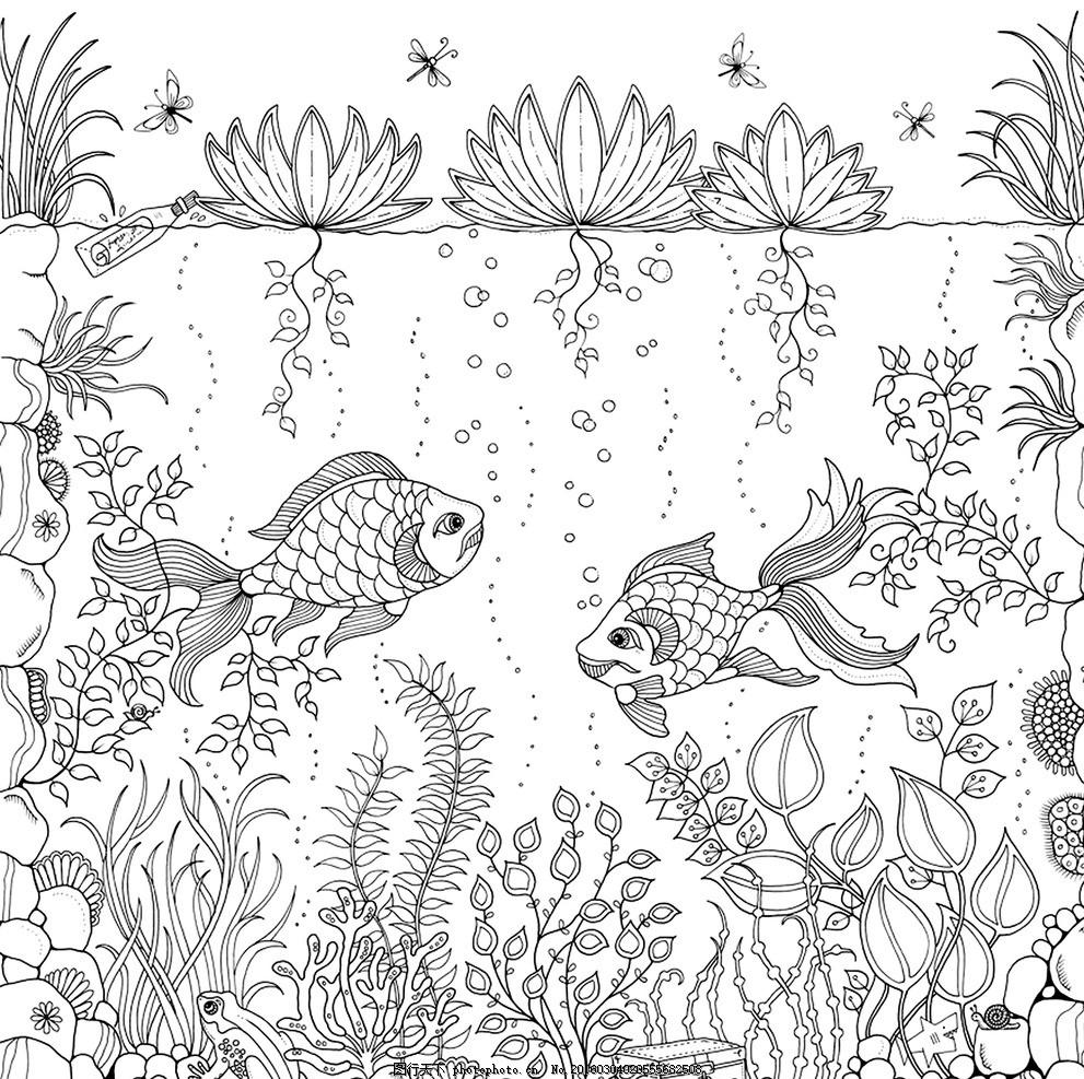 秘密花园 填色卡 填色卡鱼 草 金鱼 简笔画 小学生 绘画 文化艺术