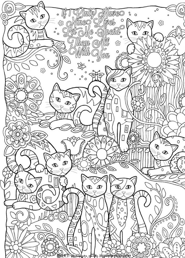 秘密花园 填色卡 猫 简笔画 小学生 绘画 文化艺术 绘画书法
