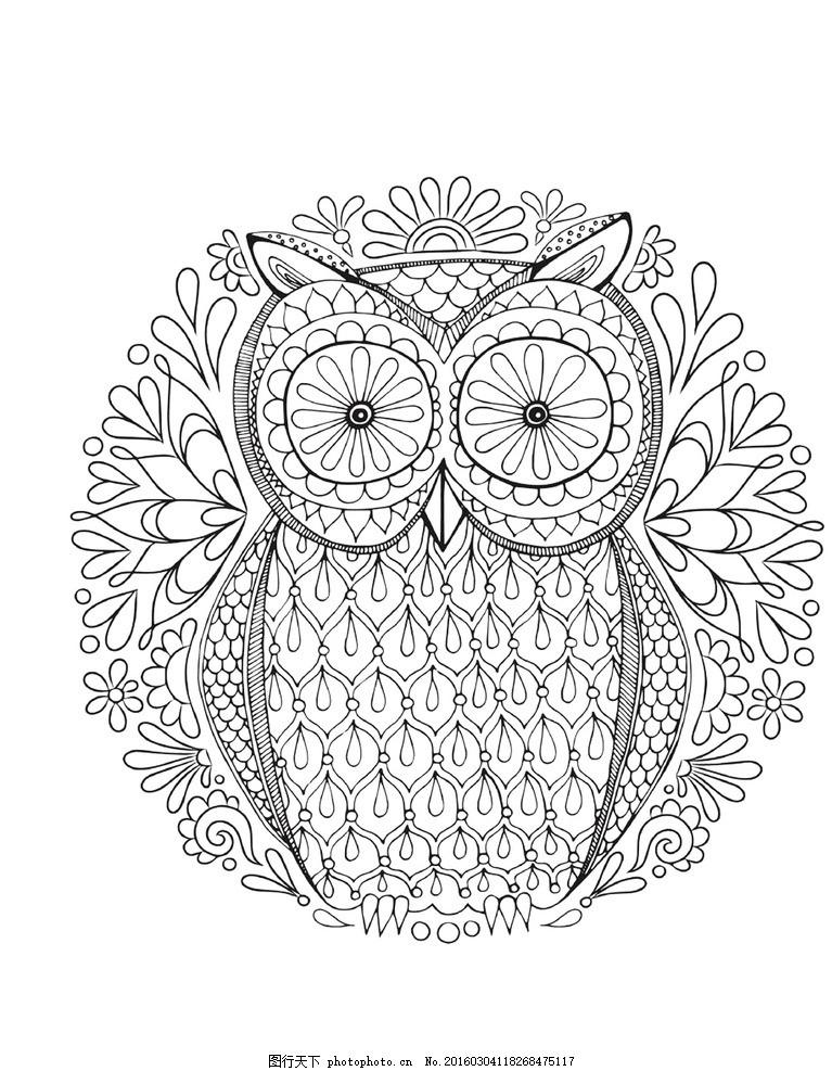 秘密花园 填色卡 猫头鹰 简笔画 小学生 绘画 文化艺术 绘画书法
