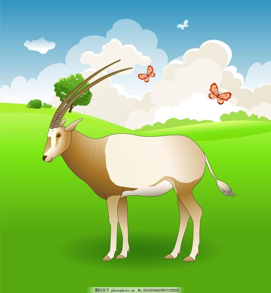 非洲动物 羊 羚羊 国家保护动物 动物 生物世界 野生动物 平面素材