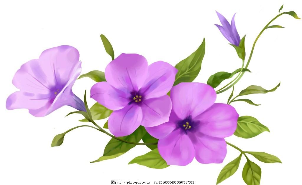唯美手绘紫色花朵