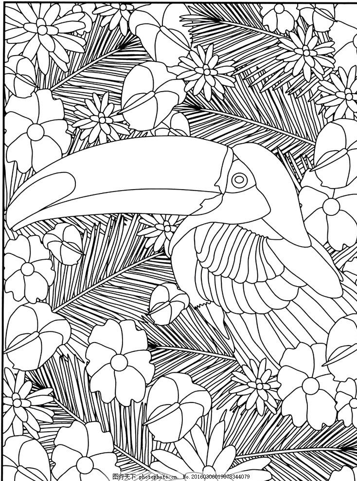 秘密花园 填色卡 大嘴鸟 简笔画 小学生 绘画