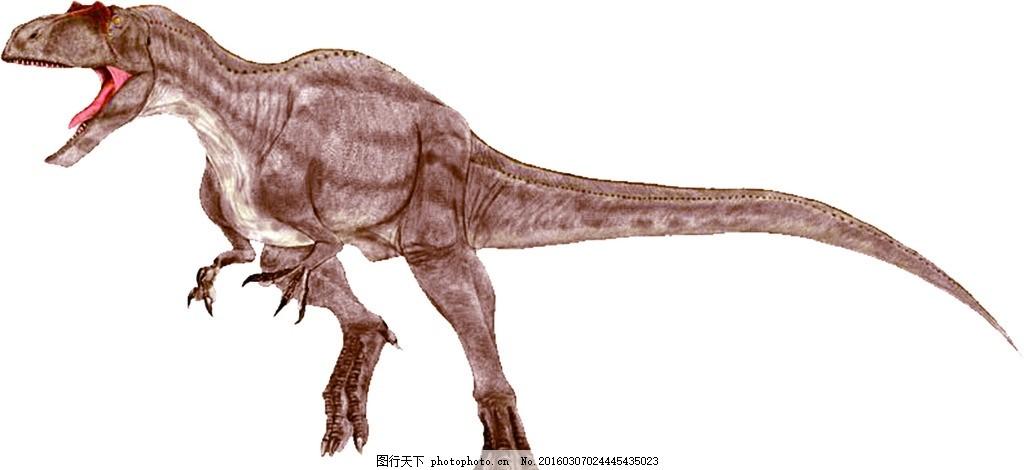 恐龙 兽脚亚目 肉食龙次亚目 异特龙科 恐龙 设计 生物世界 野生动物