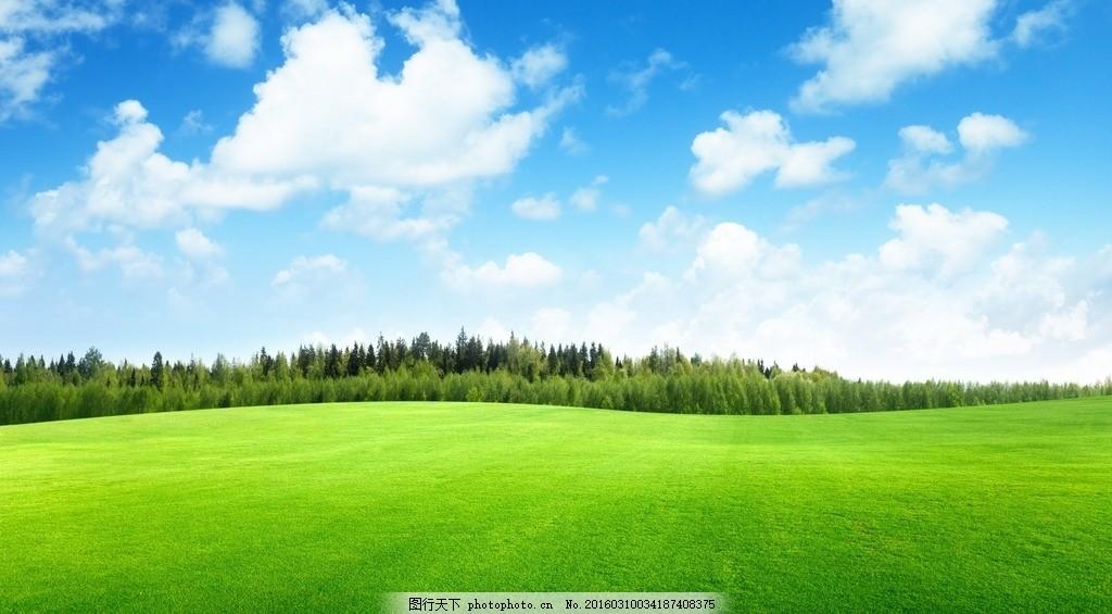蓝天绿地 蓝天 绿地 青草地 开阔 树木 青新 摄影 自然景观 自然风景