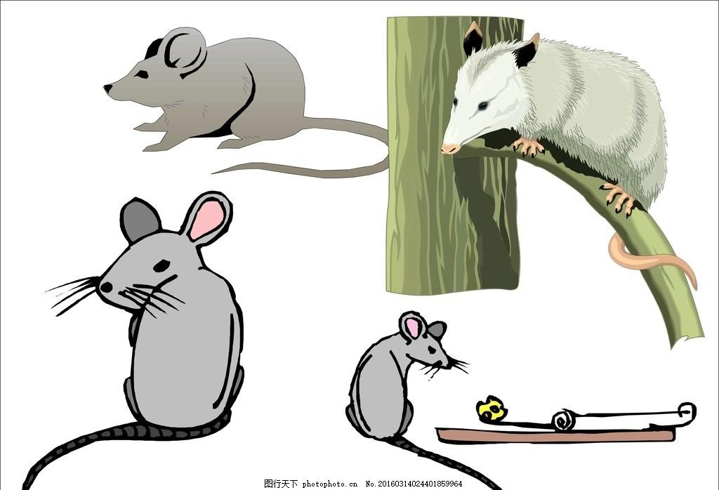简笔画 卡通老鼠 动物 小老鼠 家鼠 老鼠矢量 老鼠矢量图 老鼠素材