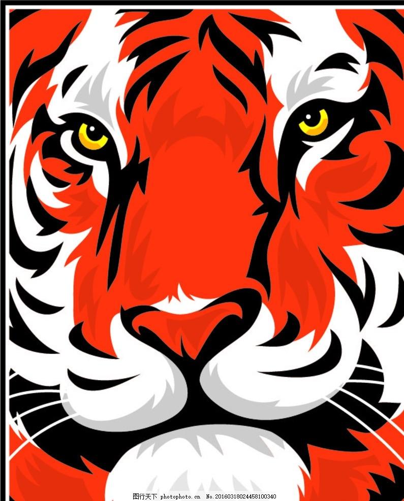 老虎 猛兽 老虎头 动物 猛禽 食肉动物 动物世界