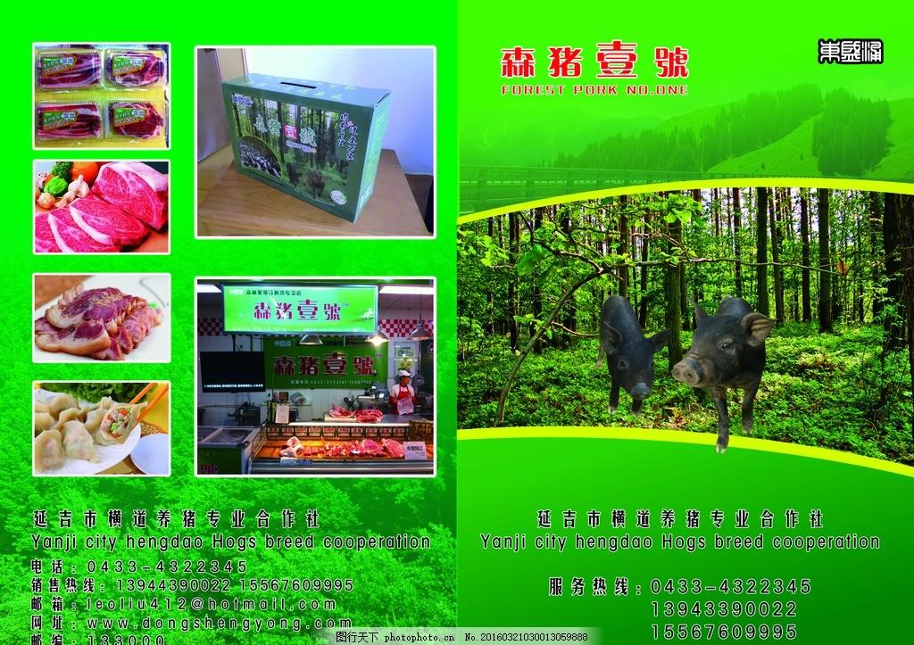 猪肉海报 猪肉宣传单 折页 黑猪肉 绿色海报 森林 健康 绿色森林