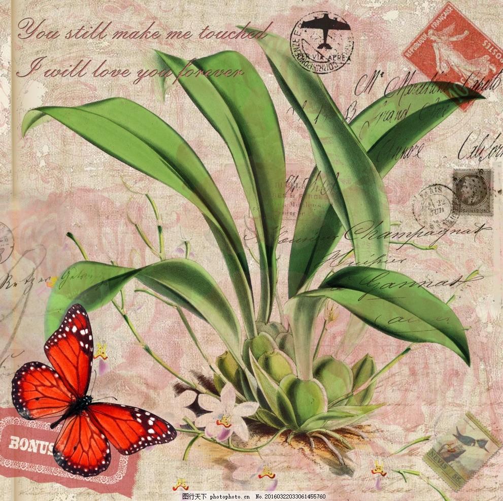 花型图案 蝴蝶 手绘花卉 玉兰花 花卉 兰花 花纹 邮票 印章 复古风
