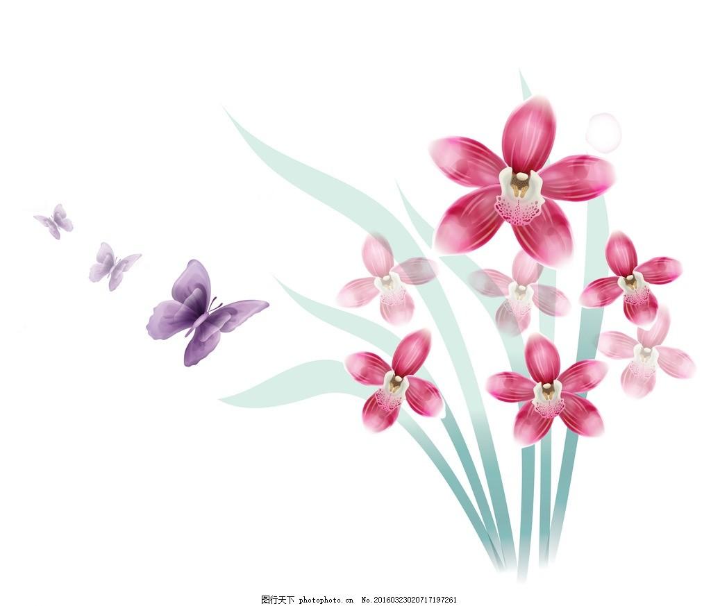 兰花 图片下载 手绘兰花 蝴蝶 花卉 鲜花 手绘花纹 精美花纹